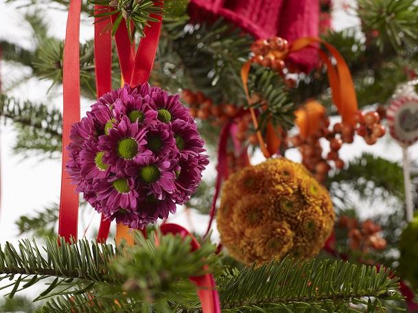 Le Chrysanthème réinventé pour Noël